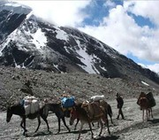 Trekking in India, Trekking in Ladakh, Trekking Tour India