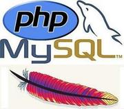 PHP Training in Chandigarh Mohali