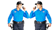 Blue Force Security Service in Karnal..