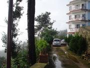 Shimla hotels and resorts