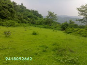 2000 sq yard farm land for sale in Himachal