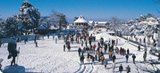 best tour operators in shimla