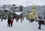 tour operator in shimla