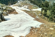 Triund Paradise for Nature Lovers