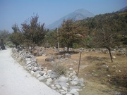 5 Bigha land for sale in Manali near Beas River