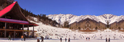 The Best Manali Honeymoon Package - ExoticHimachalTrip